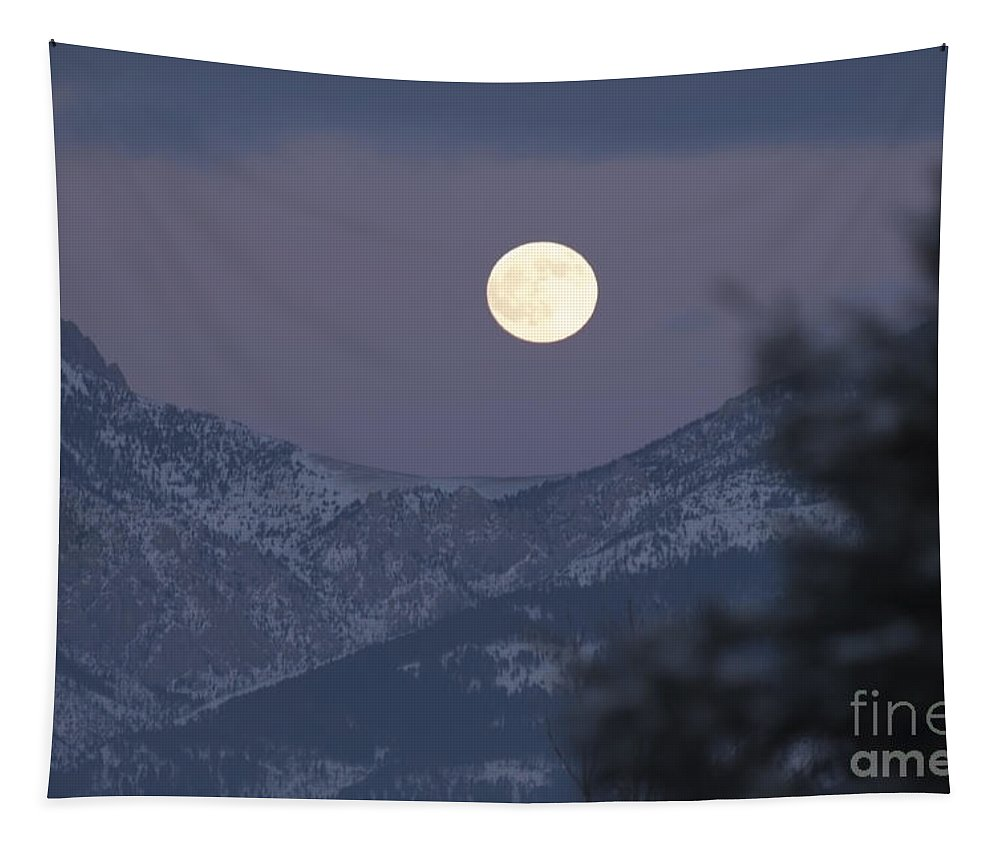 Moon Tapestry featuring the photograph Superstition Twilight by Wildlife Fine Art