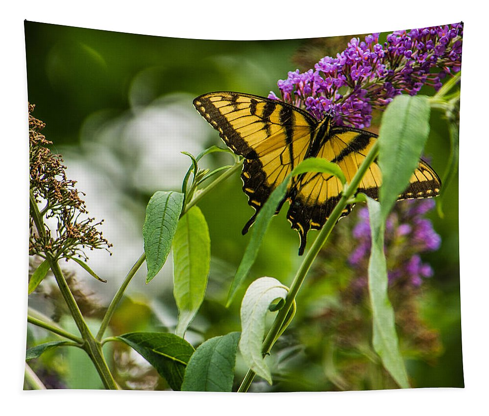 Memphis Tapestry featuring the photograph Swallowtail Butterfly by Jon Woodhams