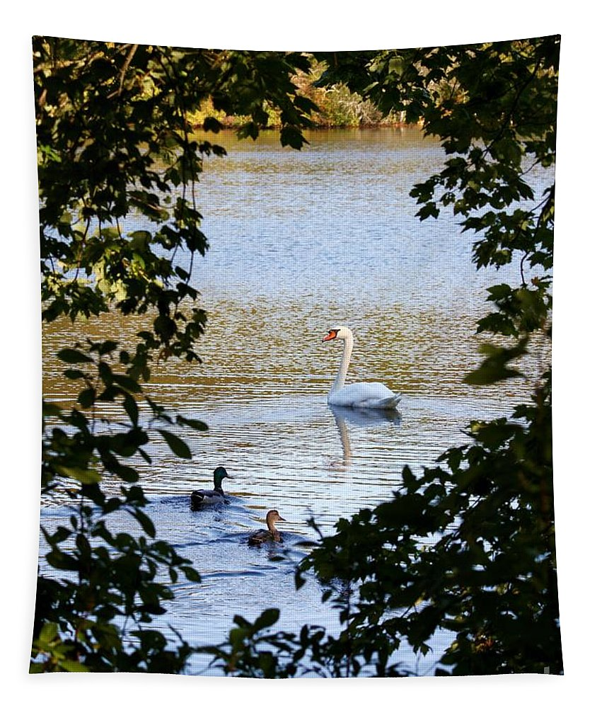 Swan Tapestry featuring the photograph Swan And Ducks Through Trees by Carol Groenen
