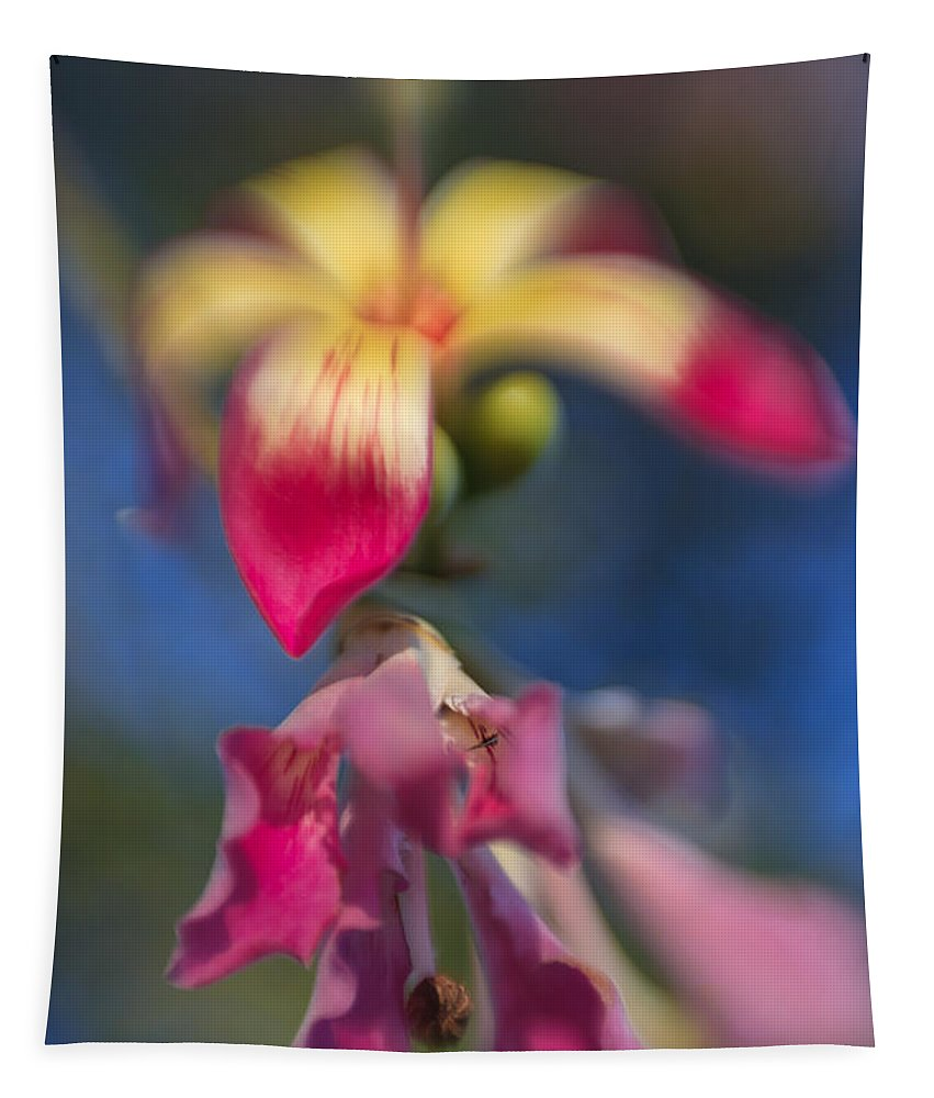 Flower Tapestry featuring the photograph Sweet And Sour by Scott Campbell