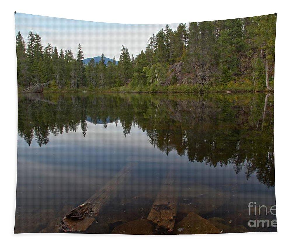 Swim Lake Tapestry featuring the photograph Swim Lake by Adam Jewell