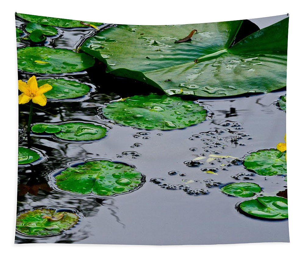 Lilly Tapestry featuring the photograph Tadpole Haven by Frozen in Time Fine Art Photography