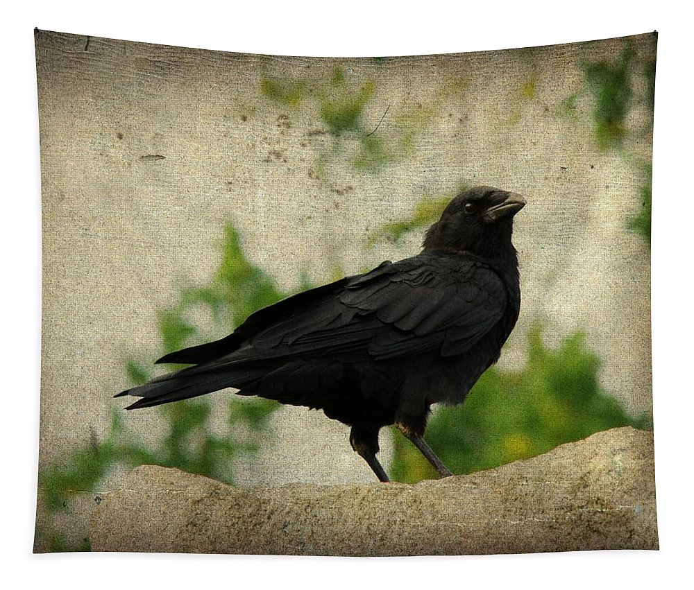 Distressed Art Crow Image Tapestry featuring the photograph Blackbird Is Taking It All In by Gothicrow Images
