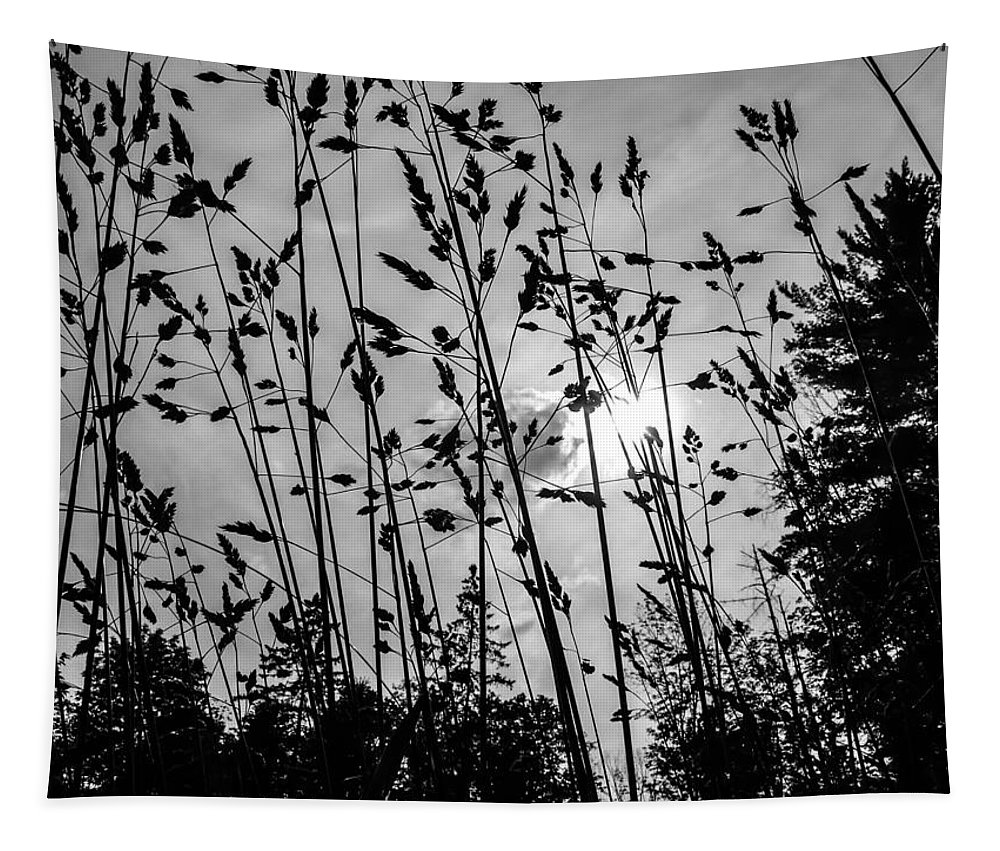 Grass Tapestry featuring the photograph Tall Grass by Sherman Perry