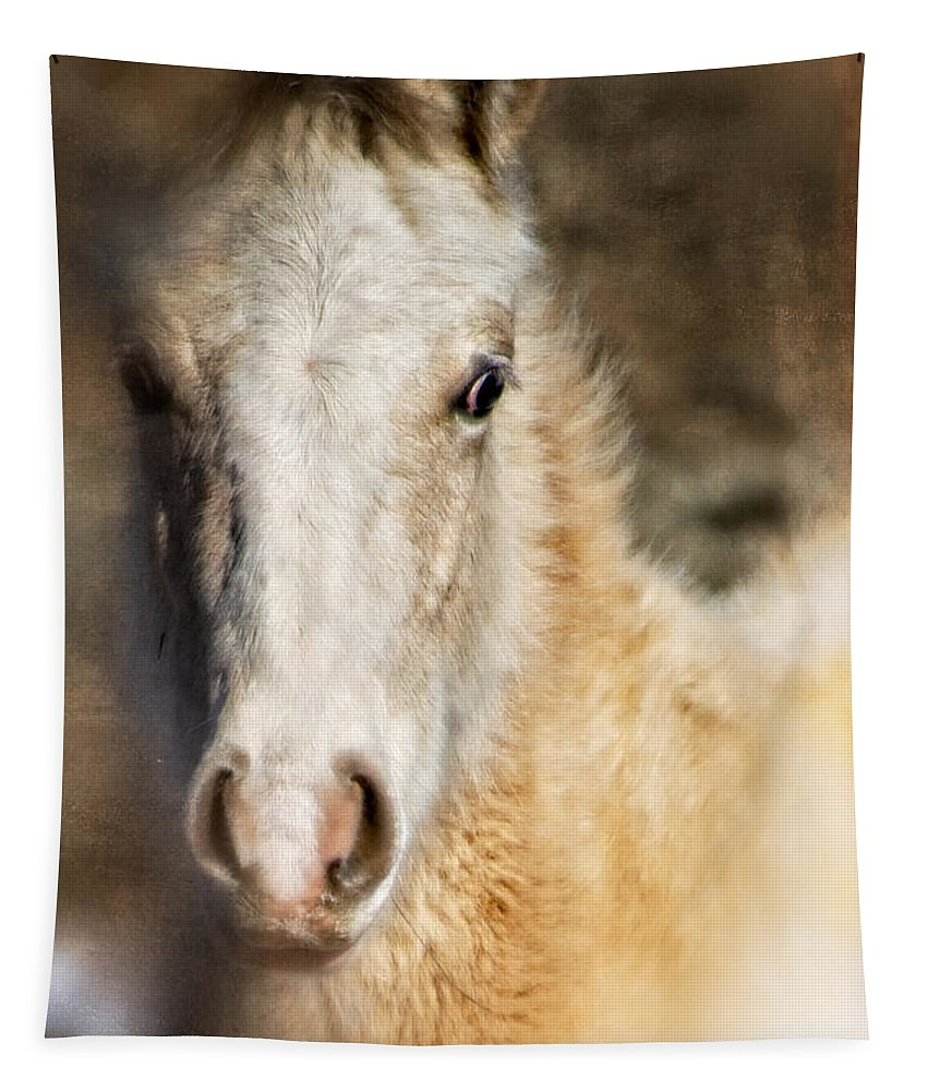 Pony Tapestry featuring the photograph Taos Pony X by Charles Muhle