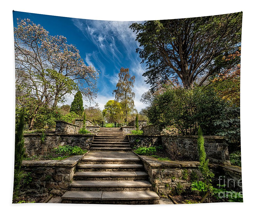 Garden Tapestry featuring the photograph Terrace Garden by Adrian Evans