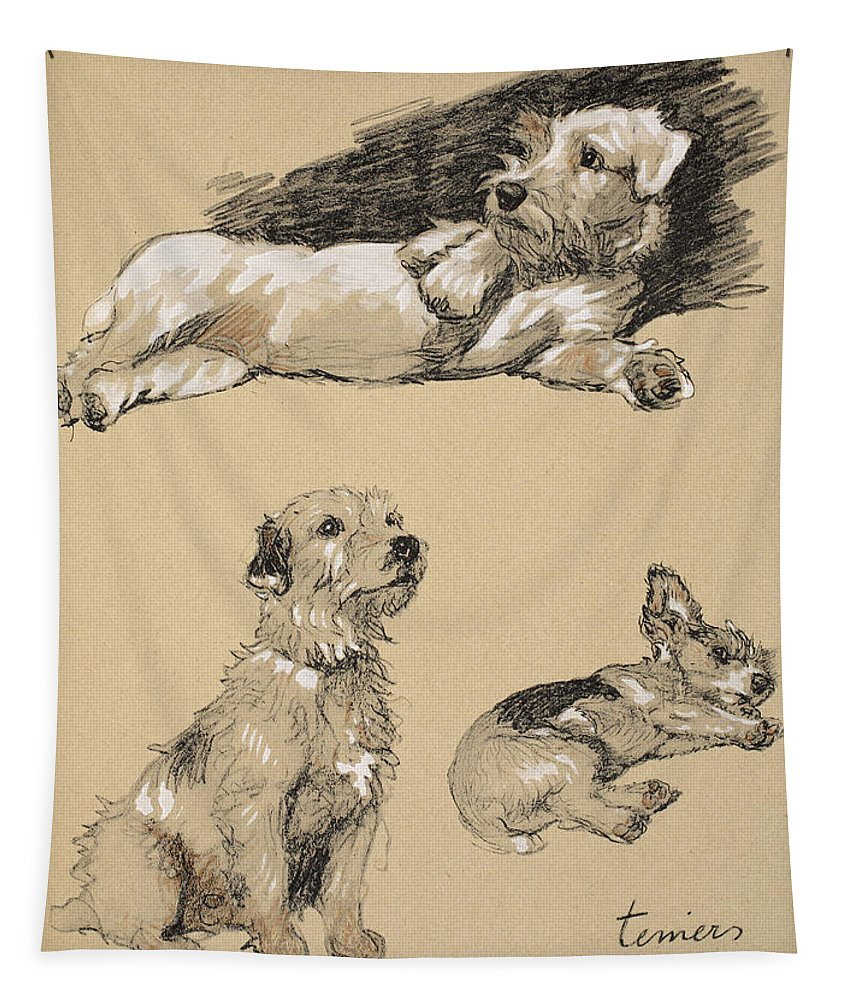 Dog Tapestry featuring the drawing Terriers, 1930, Illustrations by Cecil Charles Windsor Aldin