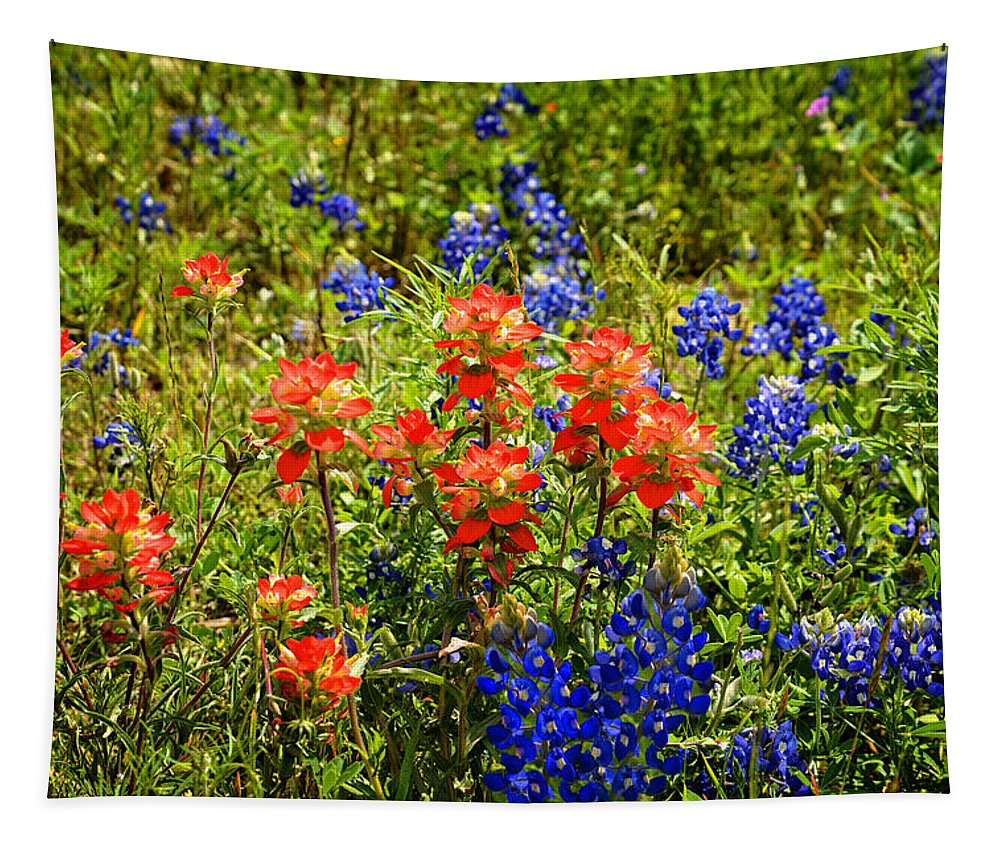 Bluebonnet Tapestry featuring the photograph Texas Bluebonnets And Red Indian Paintbrush by Lynn Bauer