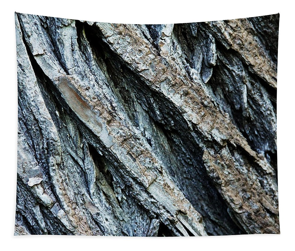 Abstract Tapestry featuring the photograph Textured Tree Bark by Debbie Oppermann