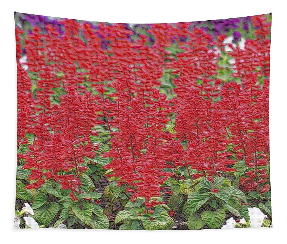 The Artist's Garden Tapestry featuring the photograph The Artist's Garden by Dan Sproul