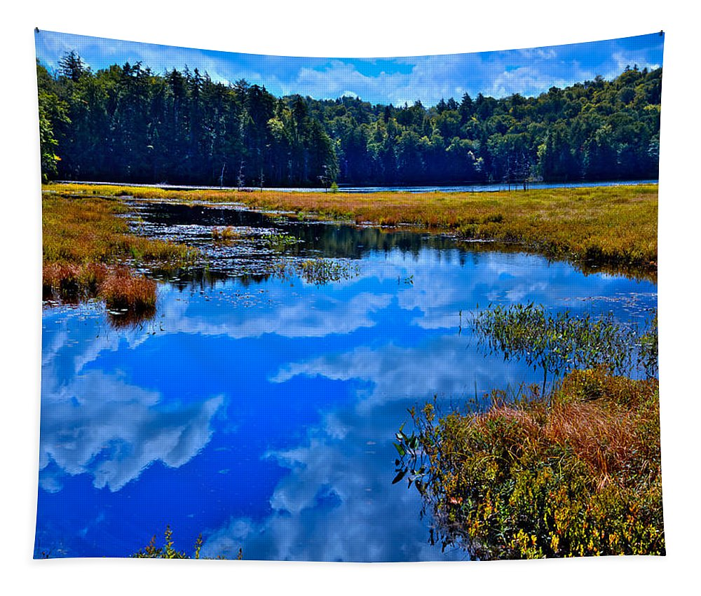 Adirondack's Tapestry featuring the photograph The Beautiful Cary Lake - Old Forge New York by David Patterson