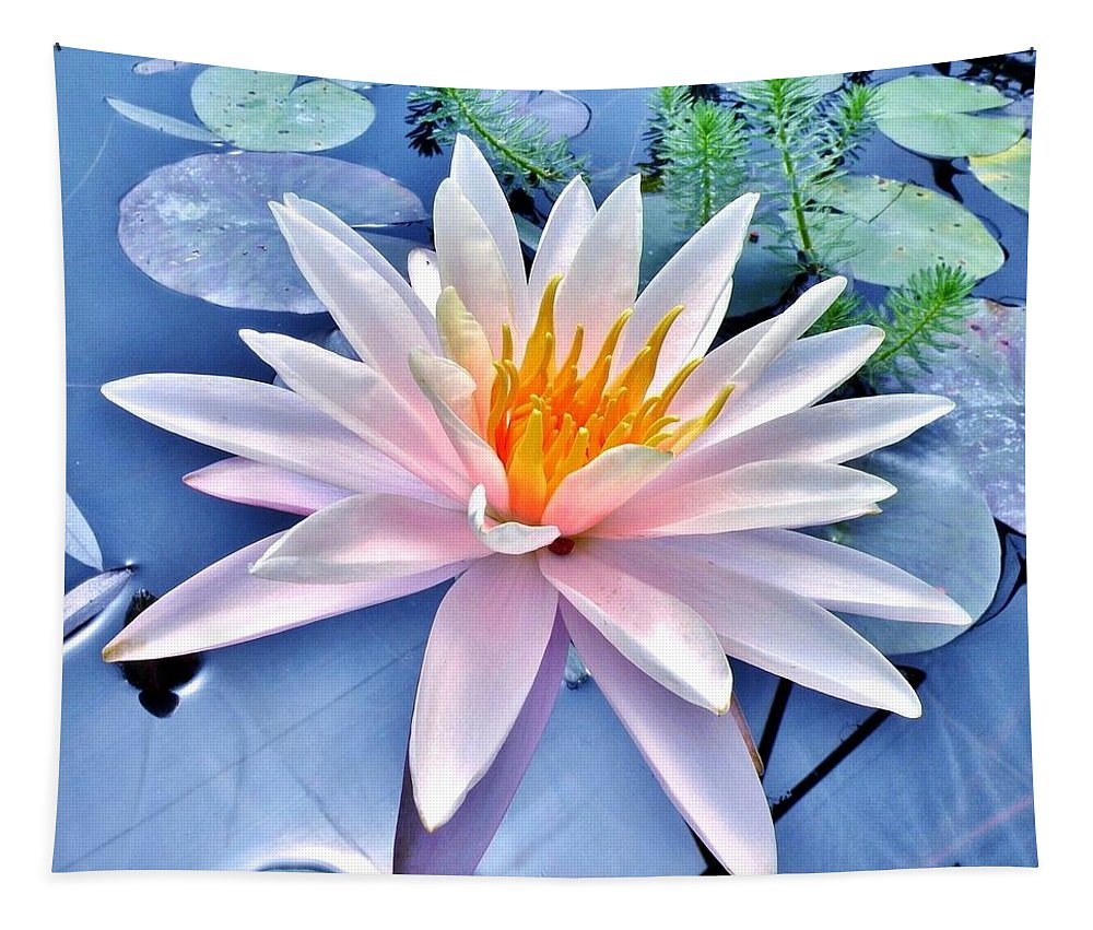 Lily Tapestry featuring the photograph The Beautiful Lily Pond by Kim Bemis
