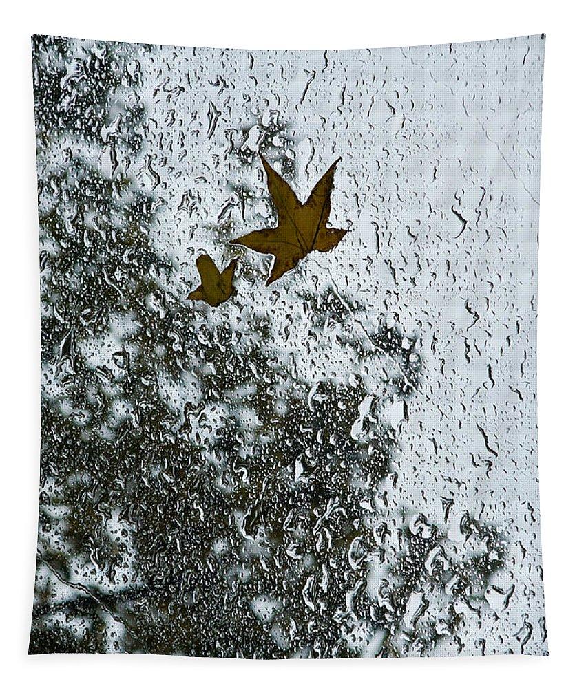 Georgia Mizuleva Tapestry featuring the photograph The Beauty Of Autumn Rains - A Vertical View by Georgia Mizuleva
