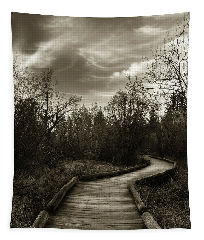 The Boardwalk Tapestry featuring the photograph The Boardwalk by Mitch Shindelbower