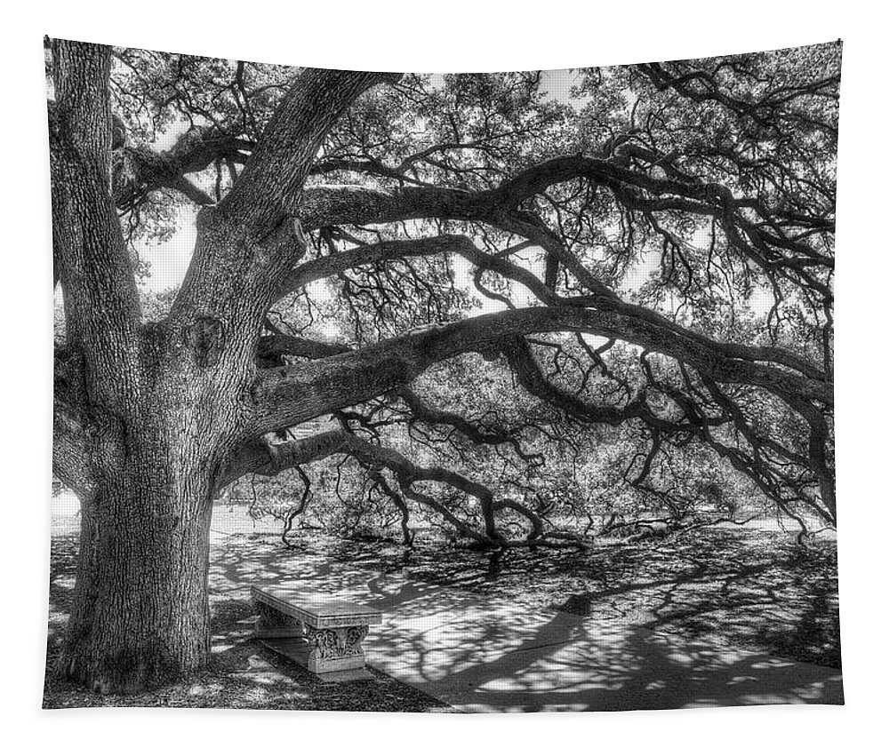 Tree Tapestry featuring the photograph The Century Oak by Scott Norris