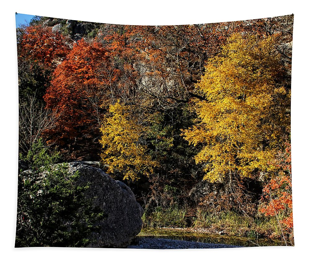 Autumn Tapestry featuring the photograph The Colors Of Fall by Judy Vincent