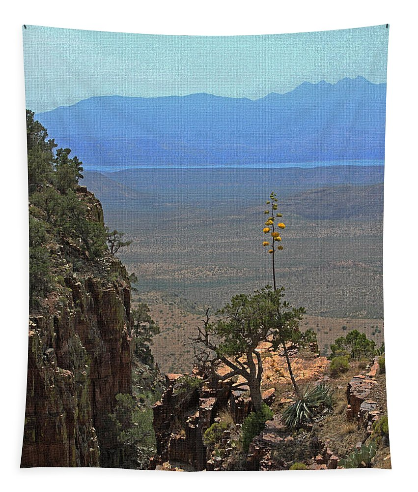 The Edge Of Parker Canyon Tapestry featuring the photograph The Edge Of Parker Canyon by Tom Janca