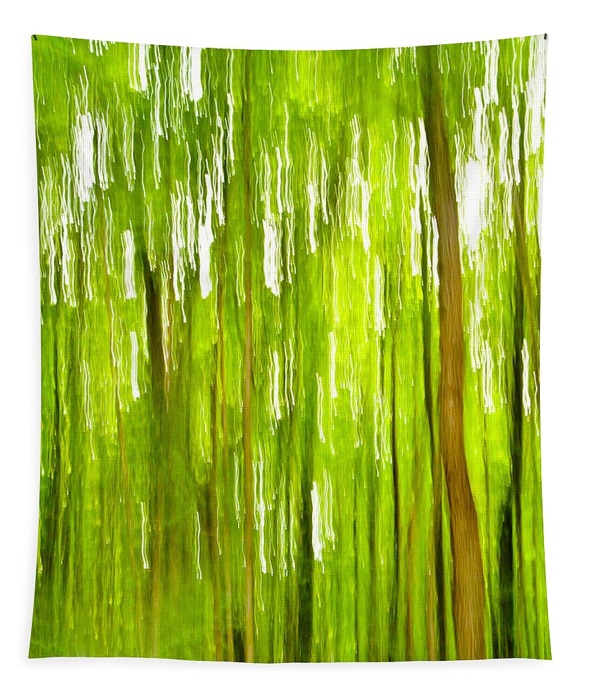 Bill Gallagher Tapestry featuring the photograph The Emerald Forest by Bill Gallagher