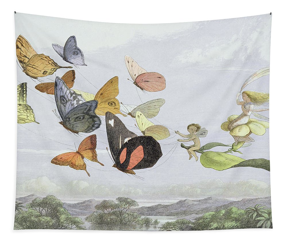 Butterfly Tapestry featuring the drawing The Fairy Queen's Carriage by Richard Doyle