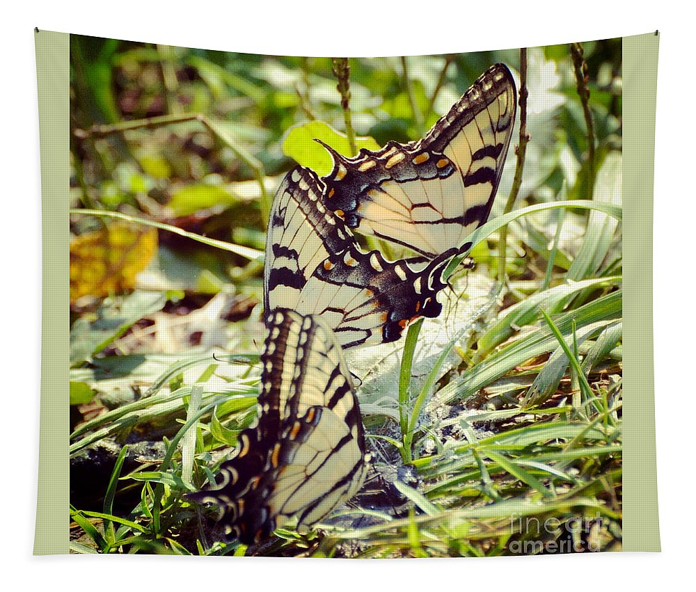 Tiger Swallowtail Butterfly Tapestry featuring the photograph The Gathering by Kerri Farley