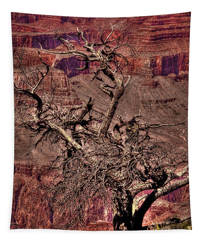 Grand Canyon Tapestry featuring the photograph The Grand Canyon Viii by David Patterson