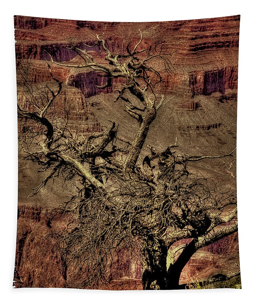 Grand Canyon Tapestry featuring the photograph The Grand Canyon Vintage Americana V by David Patterson