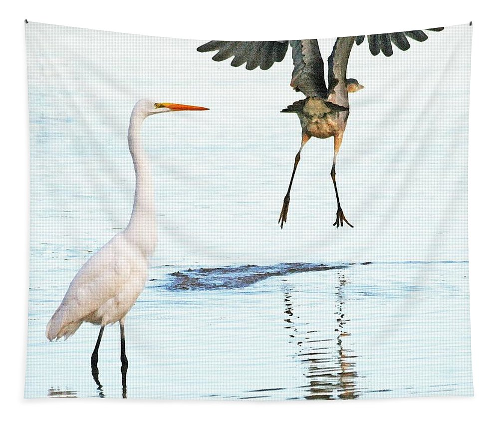 The Heron With The Bird Face Butt. Bird Face Butt. Tapestry featuring the photograph The Heron With The Bird Face Butt. by Tom Janca