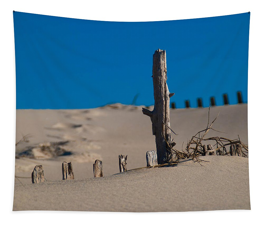Sand Tapestry featuring the photograph The Lonely Driftwood by Trish Tritz