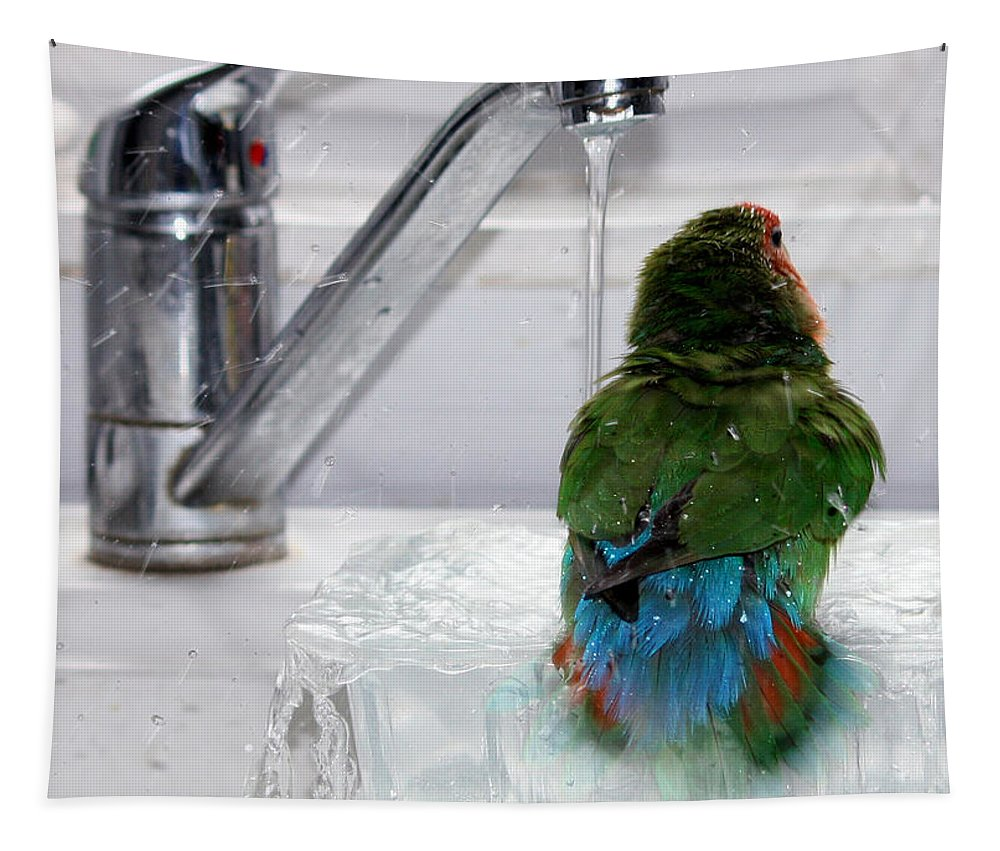Bird Tapestry featuring the photograph The Lovebird's Shower by Terri Waters