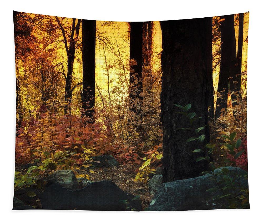 Forest Tapestry featuring the photograph The Magic Of The Forest by Saija Lehtonen