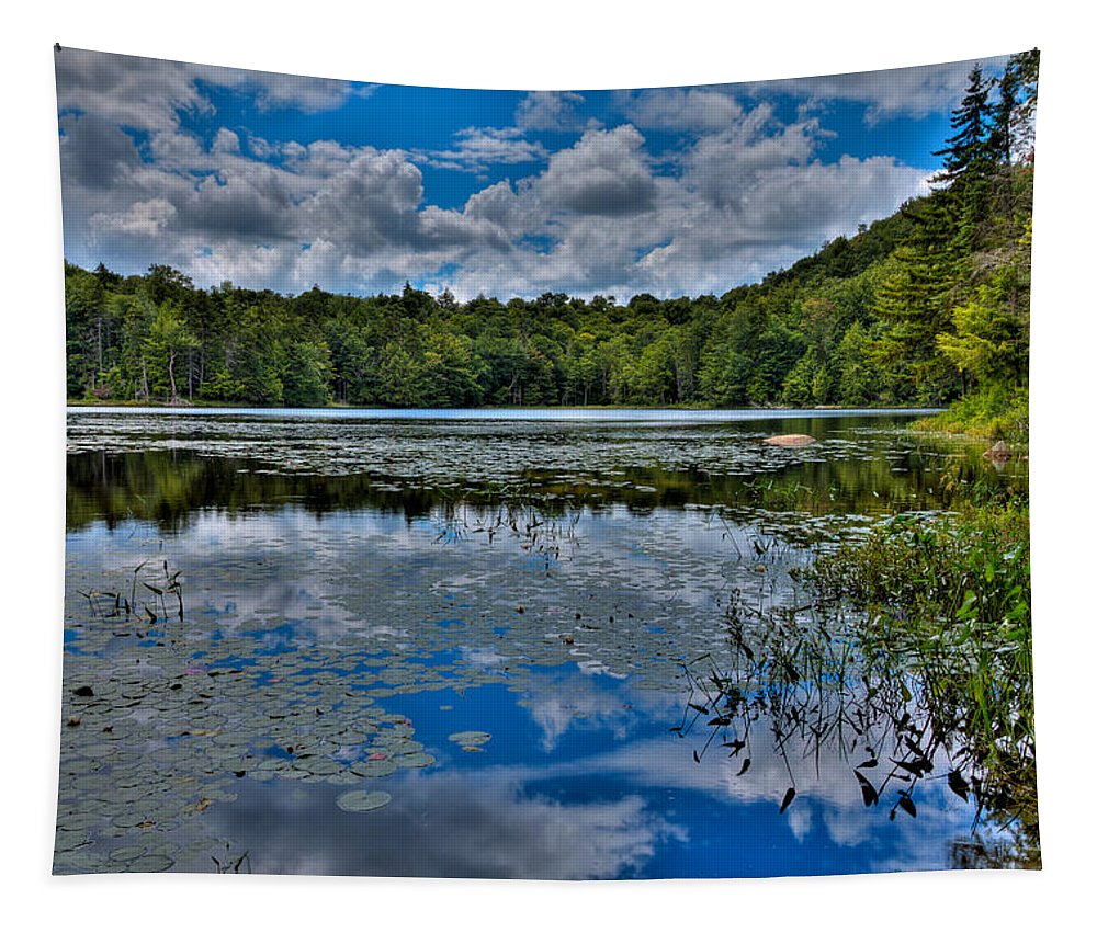 Cary Lake Tapestry featuring the photograph The Majestic Cary Lake by David Patterson