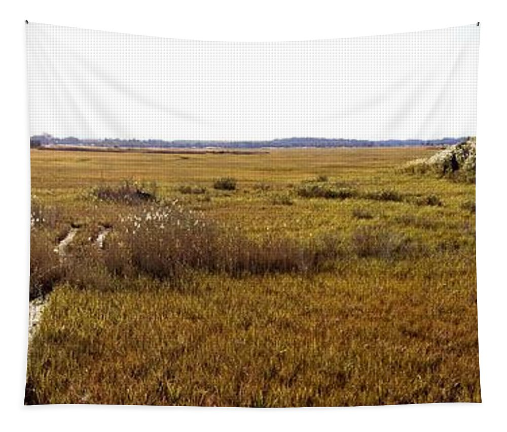 Marsh Tapestry featuring the photograph The Marsh At Cape Henlopen by Robert McCulloch