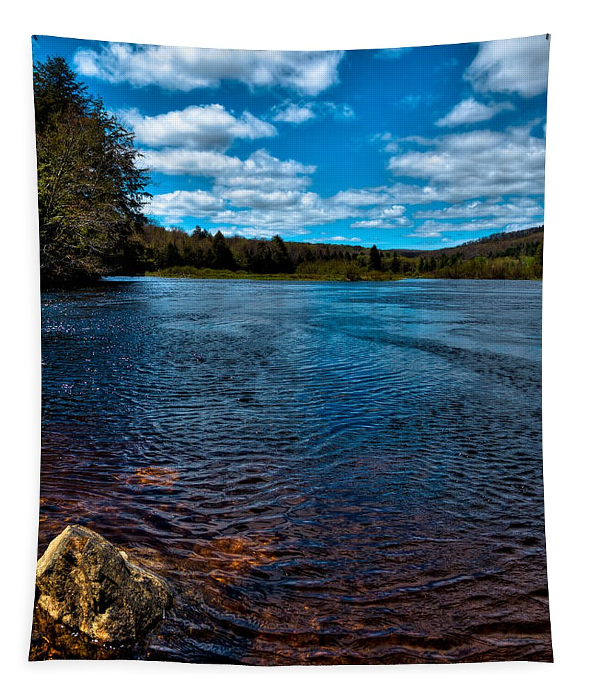 The Green Bridge Tapestry featuring the photograph The Moose River In The Spring by David Patterson