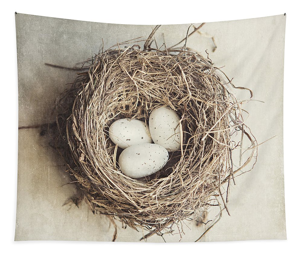 Bird Nest Tapestry featuring the photograph The Perfect Nest by Lisa R