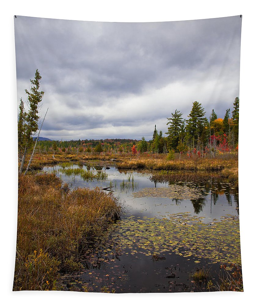 The Ponds Near Raquette Lake Tapestry featuring the photograph The Ponds Near Raquette Lake by David Patterson