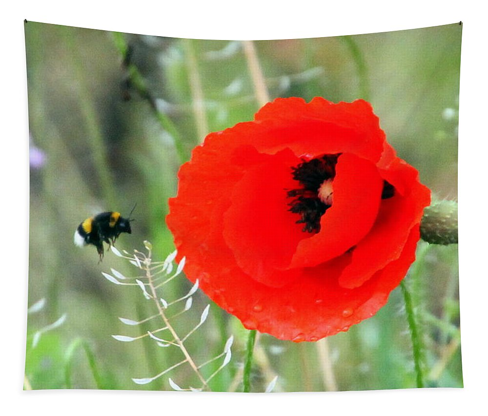 Poppy Tapestry featuring the photograph The Poppy And The Bee by Laurel Talabere