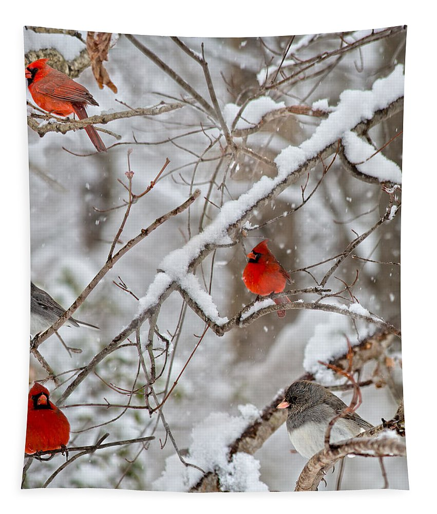 Red Tapestry featuring the photograph The Quiet Within The Forest by Betsy Knapp