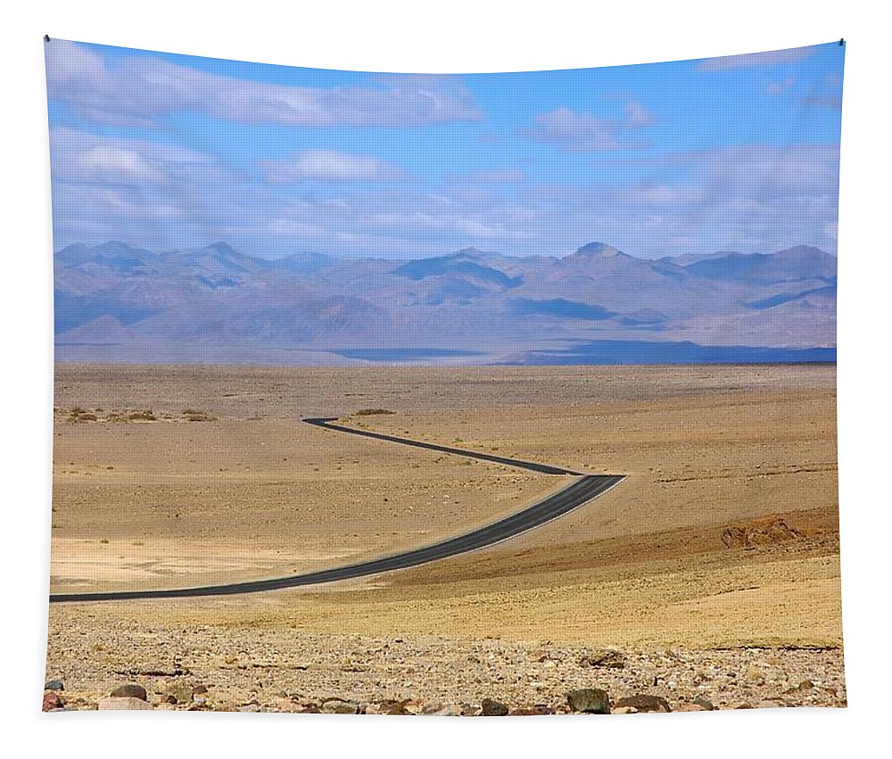Death Tapestry featuring the photograph The Road by Stuart Litoff