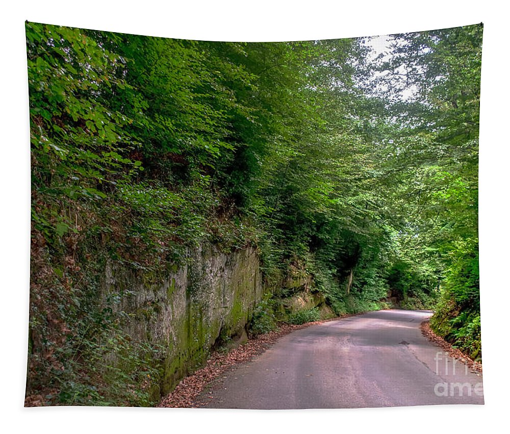 Michelle Meenawong Tapestry featuring the photograph The Road To Nowhere by Michelle Meenawong