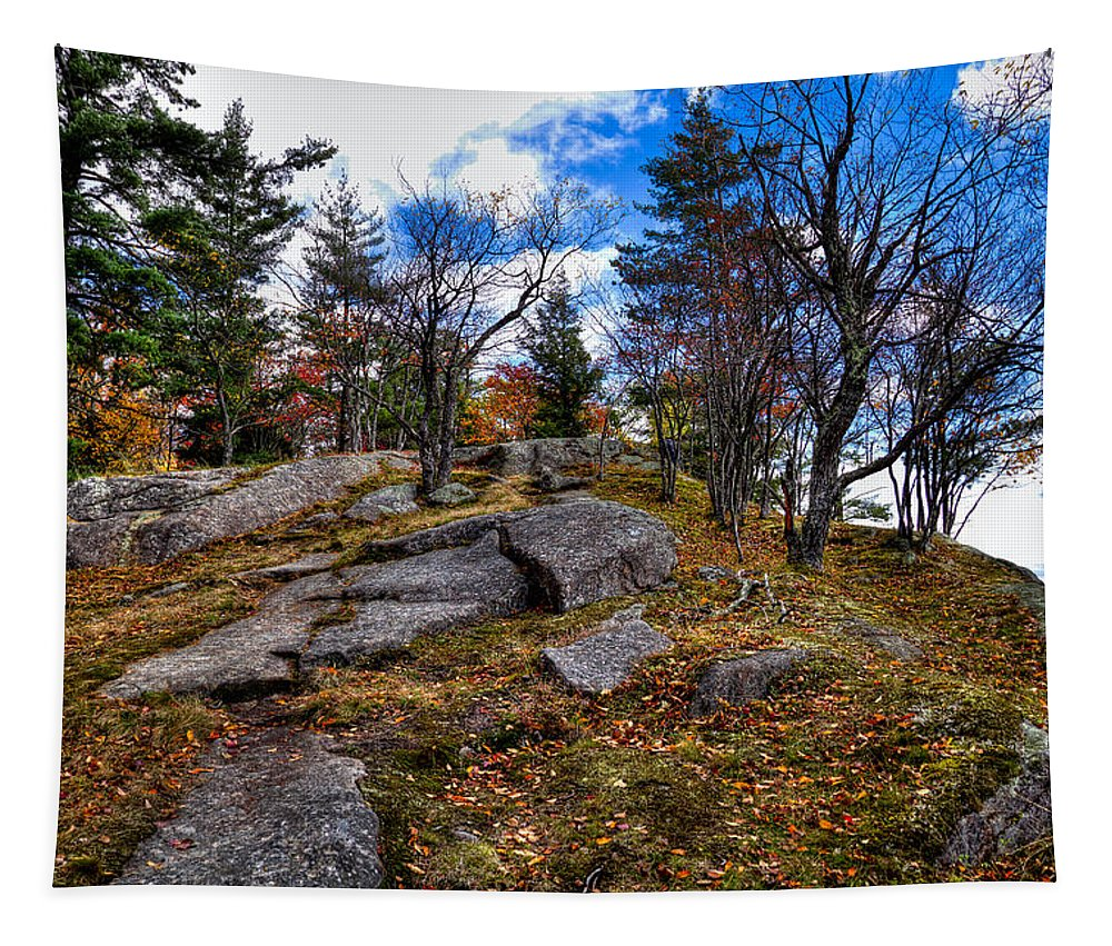 Adirondack's Tapestry featuring the photograph The Rocks Above Eagle Bay IIi by David Patterson