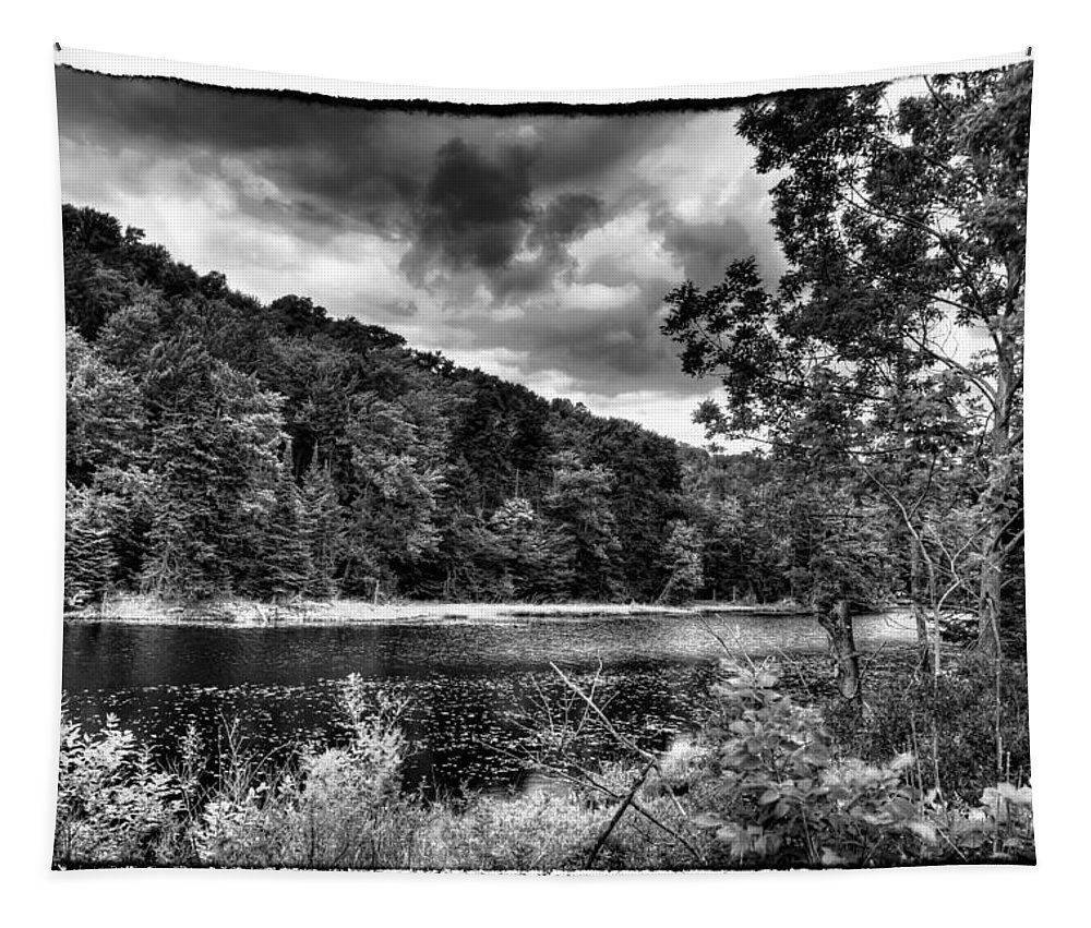 Adirondack's Tapestry featuring the photograph The Secluded Bald Mountain Pond by David Patterson