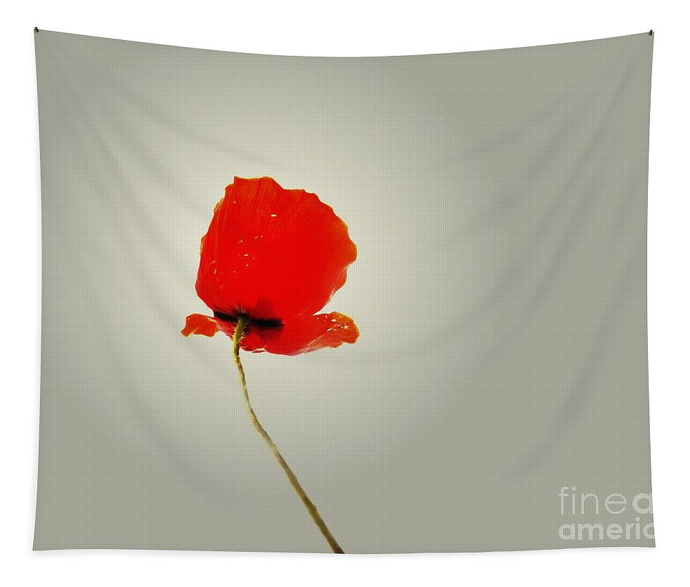Poppy Tapestry featuring the photograph The Simple Poppy by Clare Bevan