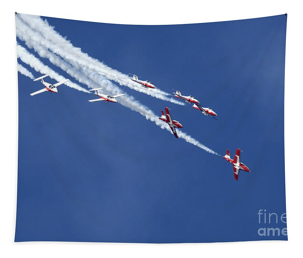 Snowbirds Tapestry featuring the photograph The Snowbirds In Harmony by Bob Christopher