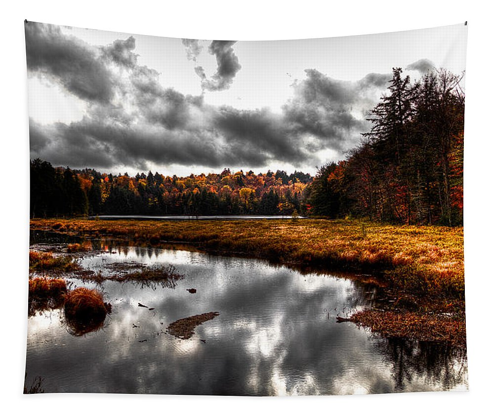 Adirondack's Tapestry featuring the photograph The South End Of Cary Lake by David Patterson