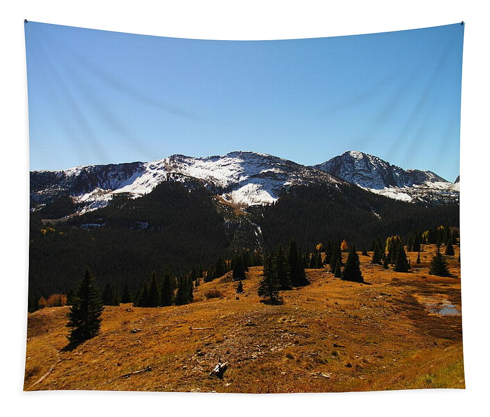 Snow Tapestry featuring the photograph The Sugar Coated Mountains by Jeff Swan