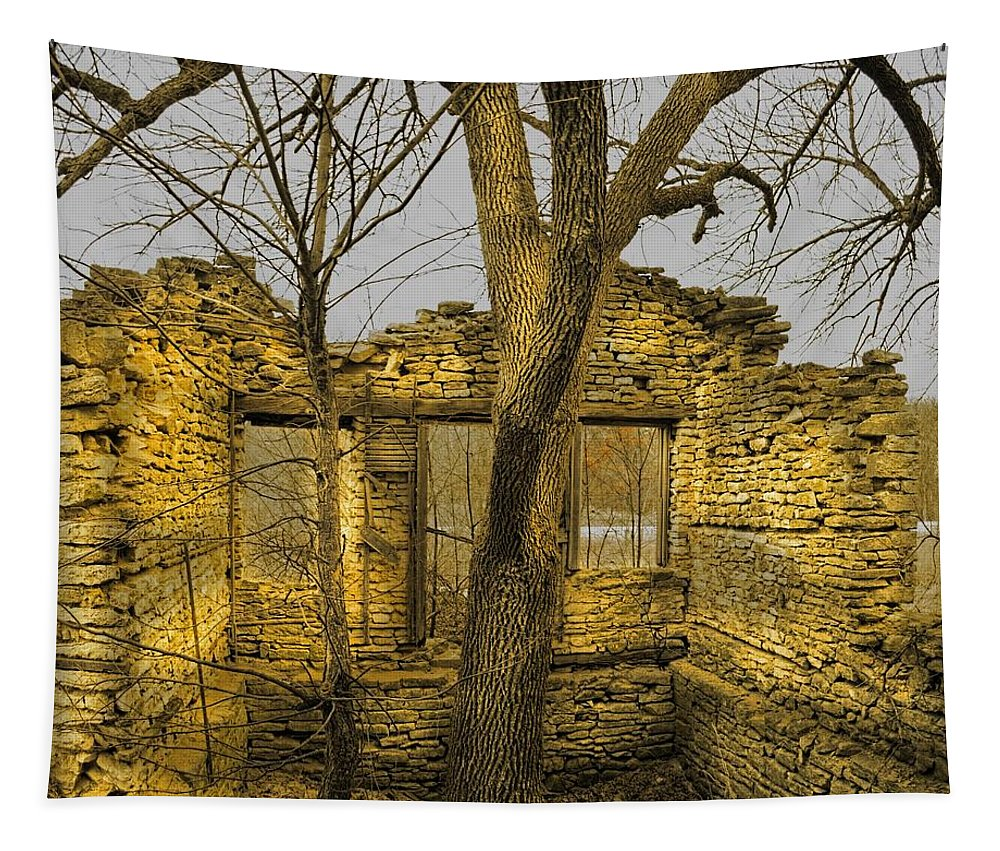 Tree Tapestry featuring the photograph The Tree House 2 by Bonfire Photography