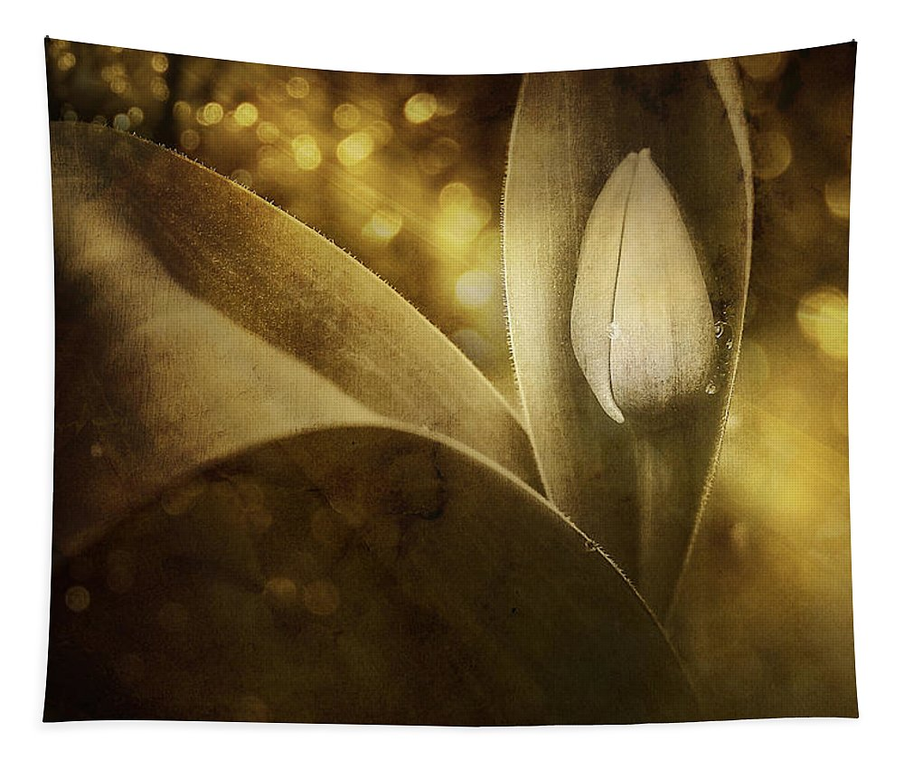 Tulip Tapestry featuring the photograph The Unveiling 2 by Scott Norris