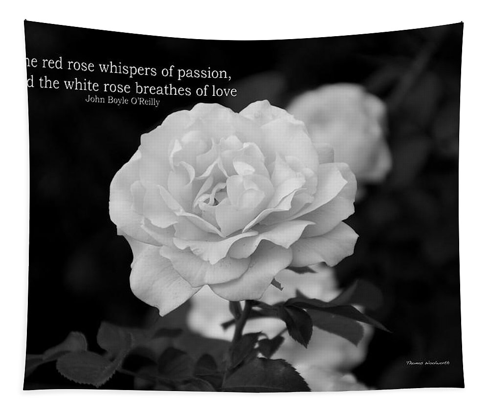 Rose Tapestry featuring the photograph The White Rose Breathes Of Love by Thomas Woolworth