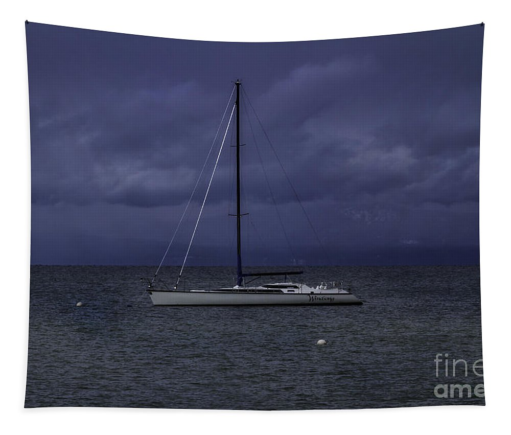 The Windsong Tapestry featuring the photograph The Windsong by Mitch Shindelbower