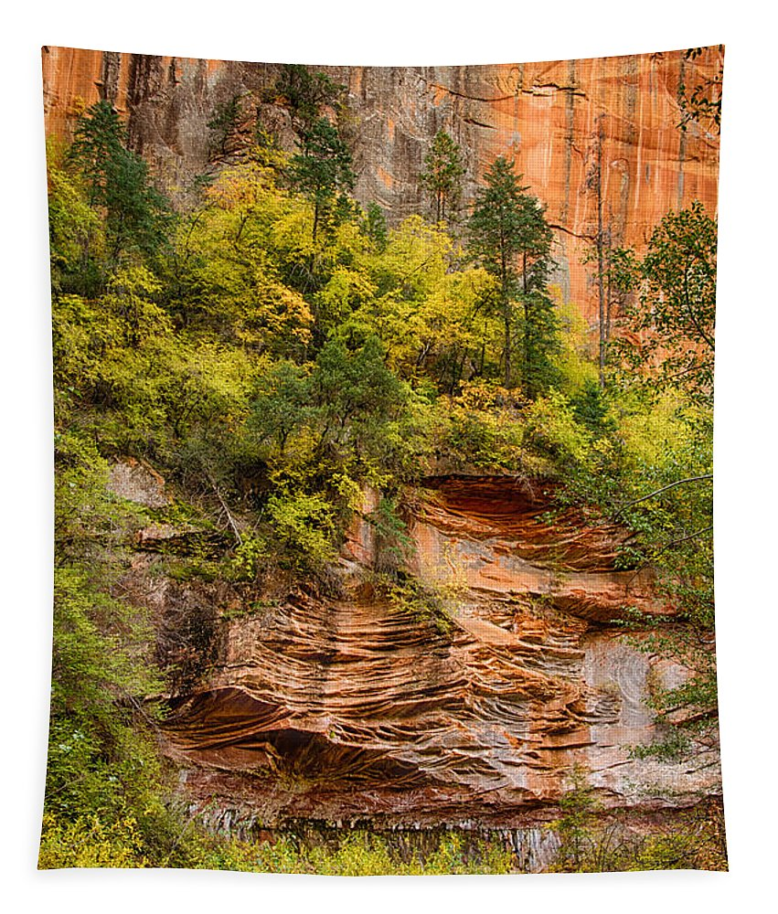 Fall Tapestry featuring the photograph The Writing On The Wall by Saija Lehtonen